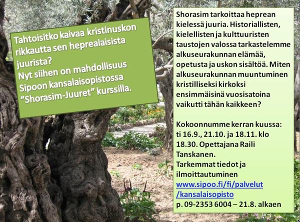 shorasim-juuret_600