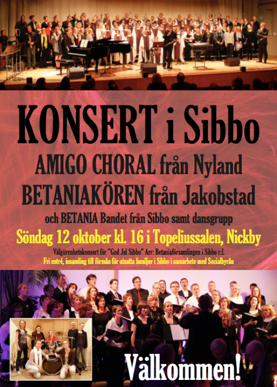 Välgörenhetskonsert God Jul Sibbo @ Topeliussalen | Finland